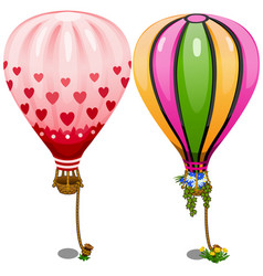 two hot air balloons with hearts and flowers vector image