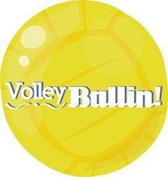 Volley ballin vector