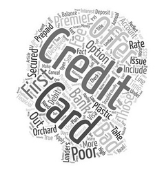 Bad Credit Credit Card Offers text background vector image vector image