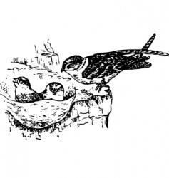 bird collocalia vector image vector image