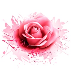 Greeting card with pink rose vector