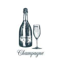 Hand sketched champagne bottle and glassvintage vector