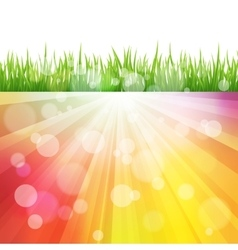 Bright color sun effect background with vector
