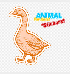 farm animal goose in sketch style on colorful vector image vector image