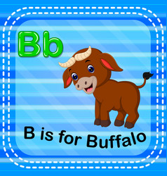 Flashcard letter b is for buffalo vector