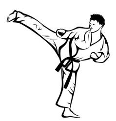 Karate kick vector image