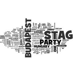 why not a stag party in budapest text word cloud vector image vector image