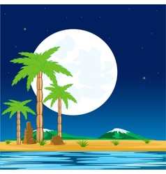 Night in tropic vector