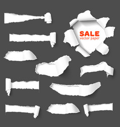 Big collection of torn paper vector