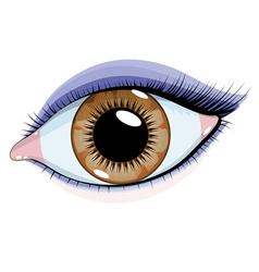 Beautiful eye vector