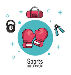 colorful poster of sports lifestyle with boxing vector image