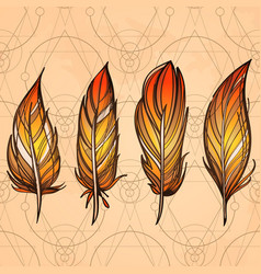 hand drawn set of feathers on beige vintage vector image vector image
