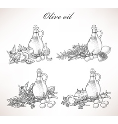 Olive oil and herbs vector