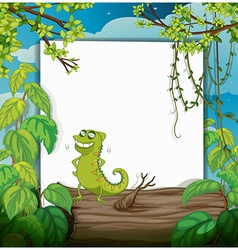 chameleon and a white board vector image vector image