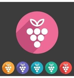 Grapes icon flat web sign symbol logo label vector image