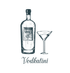 hand sketched vodka bottle and vodkatini glass vector image