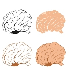 Set of Brains vector image vector image
