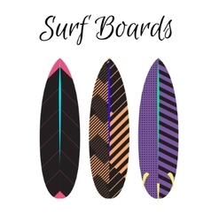 Surfboard colorful set Surfing boards vector image