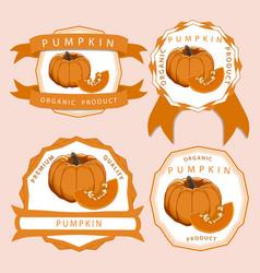 the yellow pumpkin vector image vector image