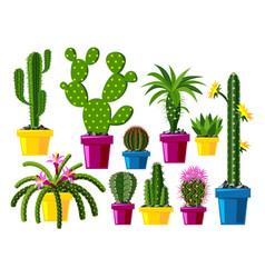 Cactus flat style nature desert flower green vector