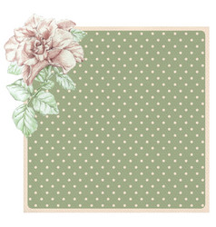 Dotted rose background with ros vector