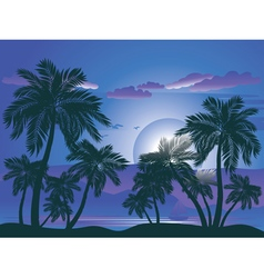 Palm Tree at Night4 vector image