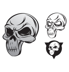 single skull vector image