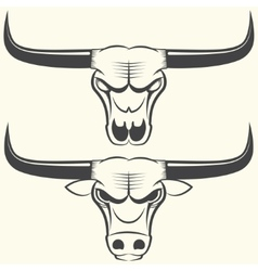 bull s head and skull vector image