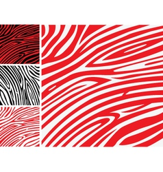 Red and white zebra skin vector