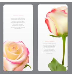 Beautiful Floral Cards with Realistic Flowers vector image vector image
