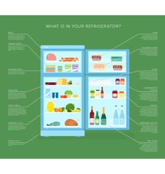 Infographic Refrigerator With Food Icons Flat vector image