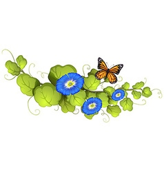 Morning glory and butterfly vector