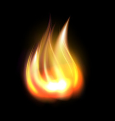 Realistic burning fire element vector