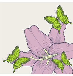 background with butterflies lily in a hand-drawn vector image