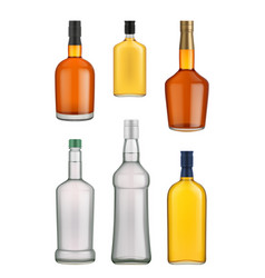Cognac whiskey and brandy bottle vector