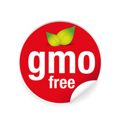 gmo free label tag red vector image vector image