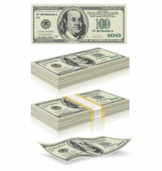 set of dollar bank notes vector image
