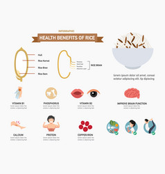 Health benefits of rice infographics vector
