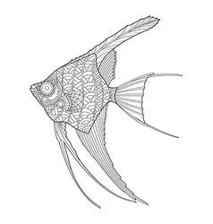 Hand drawn angel fish coloring page vector