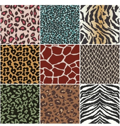 animal skin seamless swatch vector image vector image