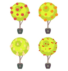 Different Fruits in a Trees vector image vector image