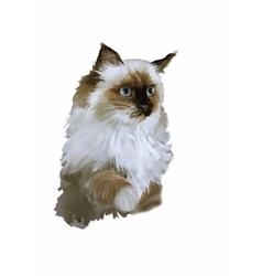 Watercolor portrait of cat vector