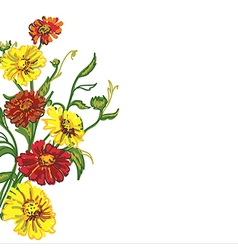 Drawing wild flowers vector