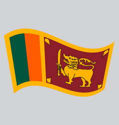 Flag of sri lanka waving on gray background vector