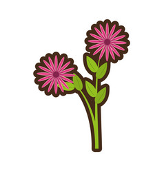 Cartoon daisy flowers bunch flora vector