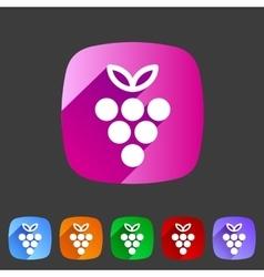 Grapes icon flat web sign symbol logo label vector