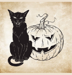 Black cat sitting with halloween pumpkin over old vector