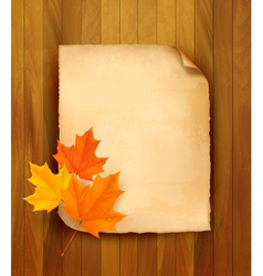 Autumn leaves paper vector