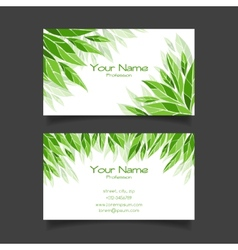 Business card with green leaves template vector