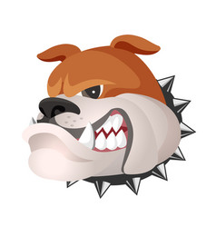 Angry bulldog face in metal collar profile view vector